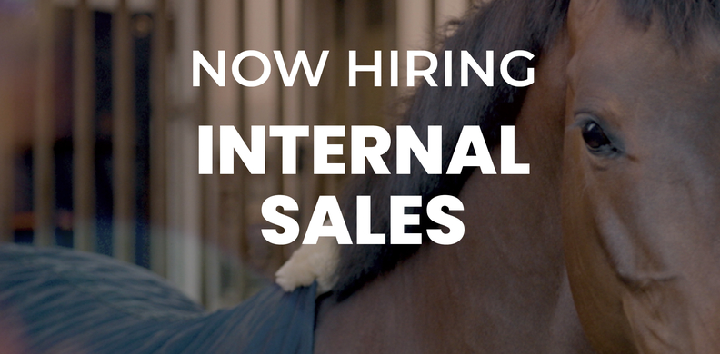 We're looking for an Internal Sales